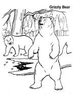coloring-pages-animals-bear-3