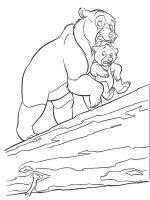 coloring-pages-animals-bear-4