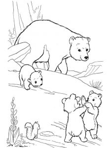 coloring-pages-animals-bear-6