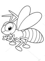 coloring-pages-bee-24