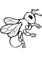 coloring-pages-bee-30