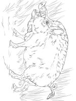 boar-coloring-pages-7