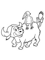 buffalo-coloring-pages-1