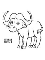buffalo-coloring-pages-20