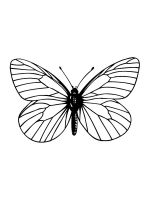 butterfly-coloring-pages-47