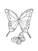 butterfly-coloring-pages-50