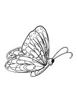 butterfly-coloring-pages-61