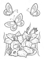 coloring-pages-animals-butterfly-12