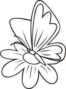 coloring-pages-animals-butterfly-17