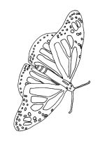 coloring-pages-animals-butterfly-27