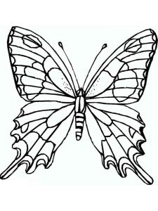 coloring-pages-animals-butterfly-32