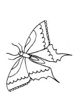 coloring-pages-animals-butterfly-4