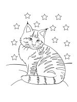 cat-coloring-pages-52