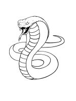 cobra-coloring-pages-1
