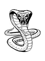 cobra-coloring-pages-2