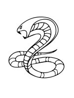 cobra-coloring-pages-22
