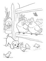 coloring-pages-animals-cock-9