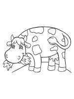 cow-coloring-pages-21