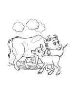 cow-coloring-pages-24