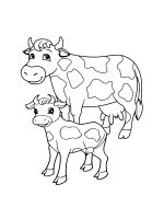 cow-coloring-pages-34