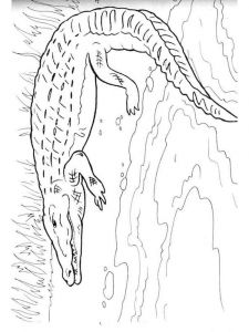 coloring-pages-animals-crocodile-12