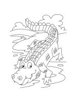 crocodile-coloring-pages-24