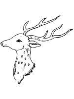 deer-head-coloring-pages-9