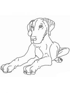coloring-pages-animals-dogs-11