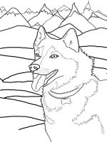 coloring-pages-animals-dogs-14