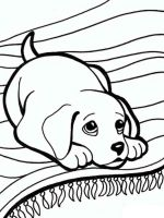 coloring-pages-animals-dogs-19