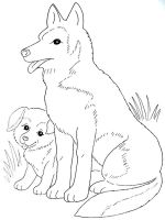 coloring-pages-animals-dogs-26
