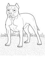 coloring-pages-animals-dogs-3