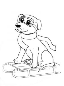 coloring-pages-animals-dogs-33