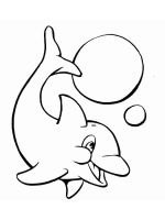 coloring-pages-animals-dolphin-12