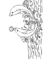 coloring-pages-animals-dolphin-17