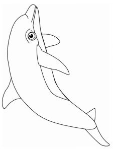 coloring-pages-animals-dolphin-8