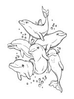 dolphin-coloring-pages-39