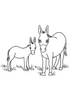 donkey-coloring-pages-19