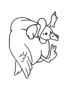 coloring-pages-animals-duck-16