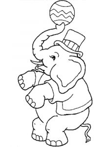 coloring-pages-animals-elephant-12