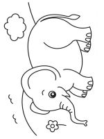 coloring-pages-animals-elephant-18