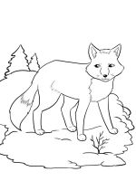 coloring-pages-animals-fox-11