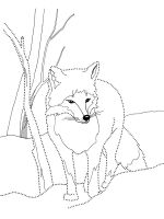 fox-coloring-pages-19