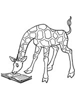 coloring-pages-animals-giraffe-10