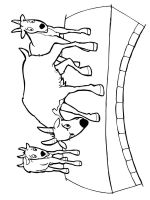 coloring-pages-animals-goat-12