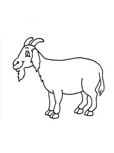 coloring-pages-animals-goat-14