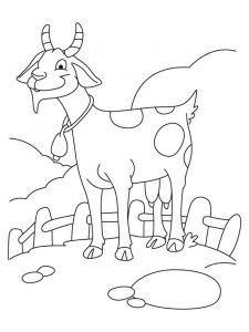 coloring-pages-animals-goat-2