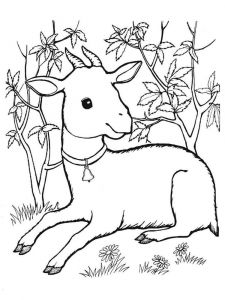 coloring-pages-animals-goat-7