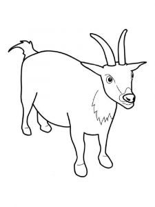coloring-pages-animals-goat-9