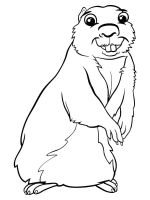 gopher-coloring-pages-4